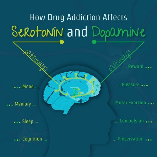 How Drug Addiction Affects Serotonin And Dopamine