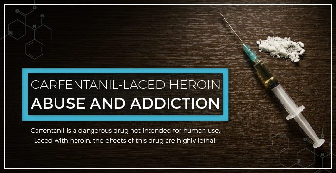 Carfentanil-Laced Heroin Abuse And Addiction
